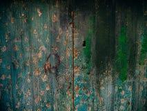 Portes vertes Texture en bois Vieille peinture minable et irradiée Photographie stock libre de droits