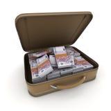 Portfölj med massor av kassa, euro vektor illustrationer