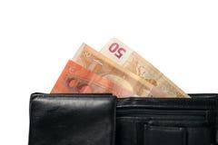 Portfel z euro banknotami Obraz Stock