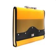portfolio kolor żółty Obrazy Royalty Free