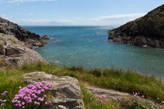 Porth Clais Wales. Porthclais port near St David's Pembrokeshire, West Wales.   Harbour leads to St Brides Bay.  The Pembrokeshire Coast Path passes alongside Stock Photos