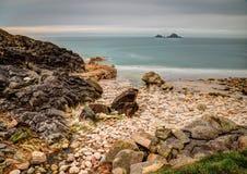 Porth Nanven liten vik, Cornwall Royaltyfri Bild