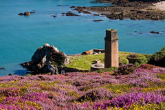 Porth Wen old brick works Stock Photography