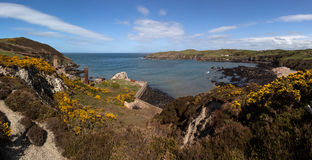 Porth Wen Old brick Works and gorse Royalty Free Stock Image
