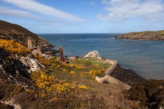 Porth Wen Old brick Works Royalty Free Stock Image