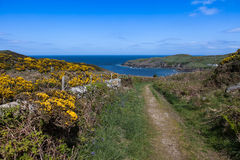 Porth Wen Royalty Free Stock Images