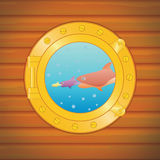 Porthole big fish Stock Photos