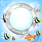 Porthole and fish Stock Image