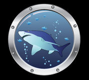 Porthole and a shark Stock Image