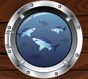 Porthole and sharks Stock Images