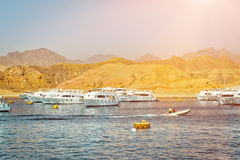 Porticciolo: Barche facenti un giro turistico di piacere sul parcheggio di PA della barca Fotografia Stock Libera da Diritti