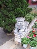 Portier chinois de lion Images stock