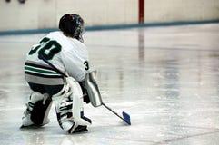 Portiere del hokey di ghiaccio Fotografia Stock Libera da Diritti
