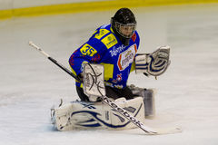 Portiere dell'hockey su ghiaccio Fotografie Stock Libere da Diritti
