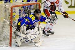 Portiere dell'hockey su ghiaccio Immagini Stock Libere da Diritti