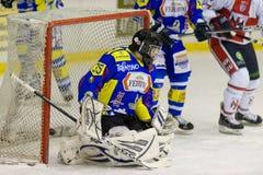 Portiere dell'hockey su ghiaccio Fotografia Stock