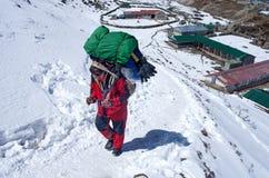 Portiers met zware lading, Nepal Royalty-vrije Stock Fotografie