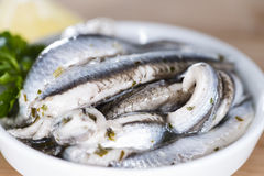 Portion of Anchovis Stock Images