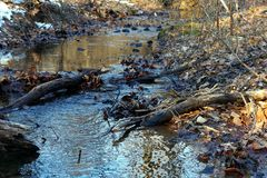 Portion of Brandywine Creek State Park. Photo of a small portion of the Brandywine creek in Delaware royalty free stock images