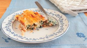 Cannelloni with bechamel sauce Stock Photography