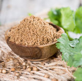 Portion of Coriander Powder Stock Photography