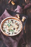 Portion of creamy mushroom soup. Portion of creamy porcini mushroom soup royalty free stock photo