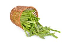 Portion cut fresh asparagus on white background Royalty Free Stock Photography