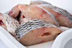 Portion cut of fresh Tilapia fish Stock Images