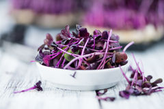 Portion of Cutted Cress Royalty Free Stock Images