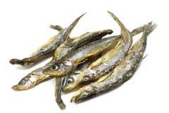 Portion d'éperlan d'arc-en-ciel sec de poissons Photos libres de droits