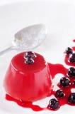 Portion de gelée de fruit saine image libre de droits