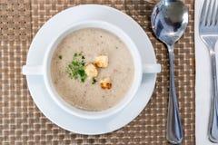 Portion de la soupe à champignons sauvage crème au restaurant photographie stock libre de droits
