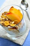 Portion de yaourt et de granola Photos libres de droits