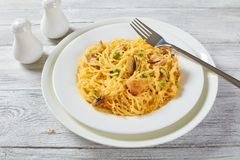 Portion of delicious Tetrazzini, top view stock photo