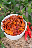 Portion of dried Chillies Stock Photos
