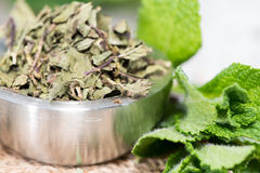 Portion of dried Mint Stock Photo