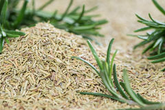 Portion of dried Rosemary Royalty Free Stock Image