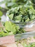 Portion of fresh Cilantro stock photo