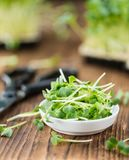Portion of Cutted Cress Stock Photography