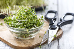 Portion of fresh Garden Cress. (detailed close-up shot) on wooden background Royalty Free Stock Photography