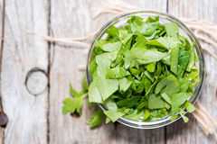 Portion of fresh Lovage (close-up shot) Royalty Free Stock Photo