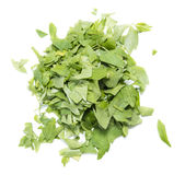 Portion of fresh Lovage on white Royalty Free Stock Photography