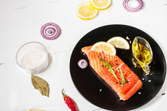 Portion of fresh salmon fillet with aromatic herbs, spices and v Stock Photography