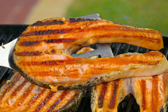 Portion of fresh salmon fillet cooced on a grill Royalty Free Stock Images
