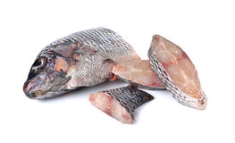 Portion of fresh Tilapia fish on white Stock Photo