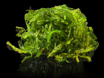 A portion of fresh wakame seaweed Royalty Free Stock Image