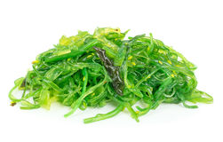 A portion of fresh wakame seaweed. On a white background Royalty Free Stock Images