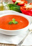 Portion of gazpacho with ingredients Royalty Free Stock Image