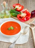 Portion of gazpacho with ingredients Stock Photography