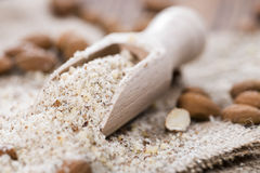 Portion of grated Almonds Royalty Free Stock Photography
